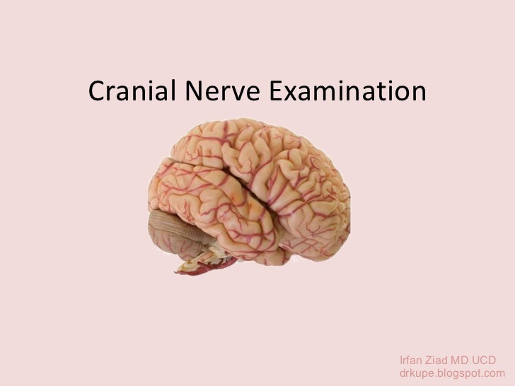 Cranial Nerve Examination Irfan Ziad MD UCD drkupe.blogspot.com