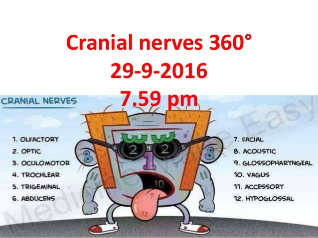 Cranial nerves 360° 29-9-2016 7.59 pm
