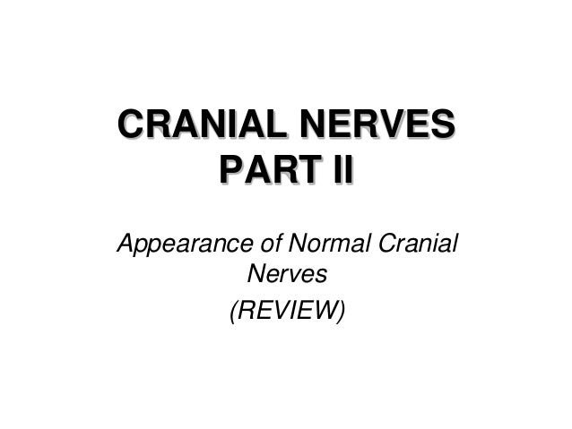 CRANIAL NERVES PART II Appearance of Normal Cranial Nerves (REVIEW)