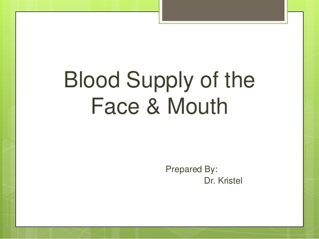 Blood Supply of the Face & Mouth Prepared By: Dr. Kristel