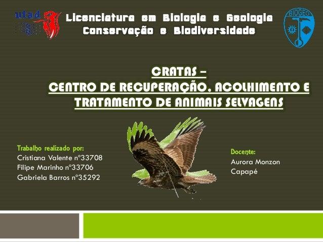 Licenciatura em Biologia e Geologia Conservação e Biodiversidade  CRATAS – CENTRO DE RECUPERAÇÃO, ACOLHIMENTO E TRATAMENTO...