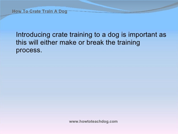 How To Train Dog To Stay In Crate