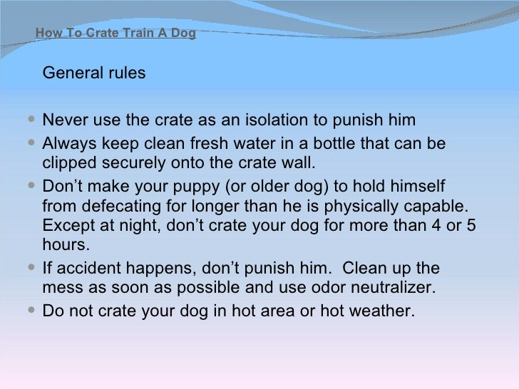 how to toilet train a dog quickly