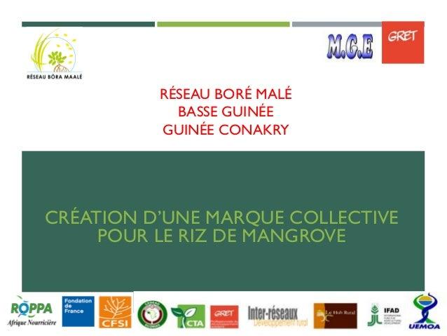 RÉSEAU BORÉ MALÉ BASSE GUINÉE GUINÉE CONAKRY CRÉATION D'UNE MARQUE COLLECTIVE POUR LE RIZ DE MANGROVE