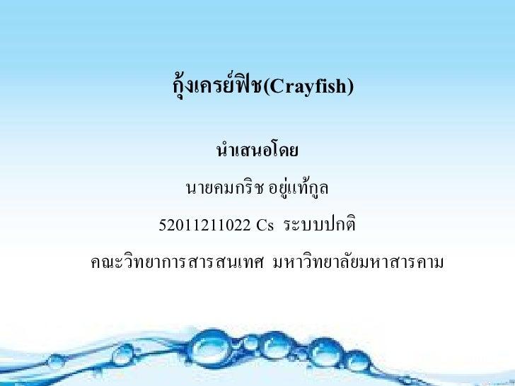 กุ้งเครย์ ฟิช(Crayfish)               นำเสนอโดย                         ่ ู           นายคมกริ ช อยูแท้กล        520112110...