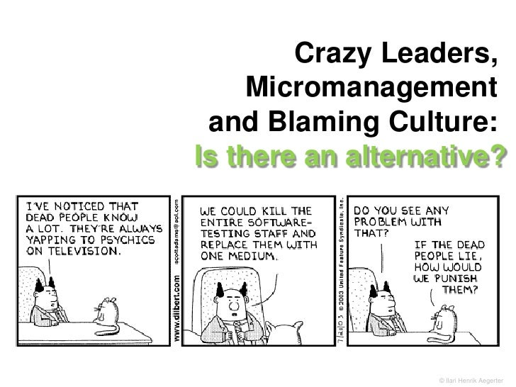 Crazy Leaders, Micromanagement <br />and Blaming Culture: Is there an alternative?<br />© Ilari Henrik Aegerter<br />