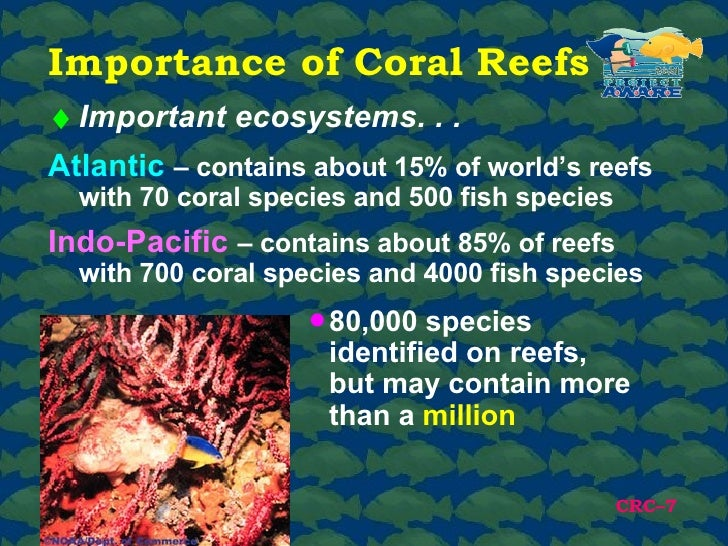 a description of the essential role of coral reefs in our ecosystem They are integrated components of the coral reef ecosystem, each playing a role in sponges are essential for with coral reefs also, many areas of coral.