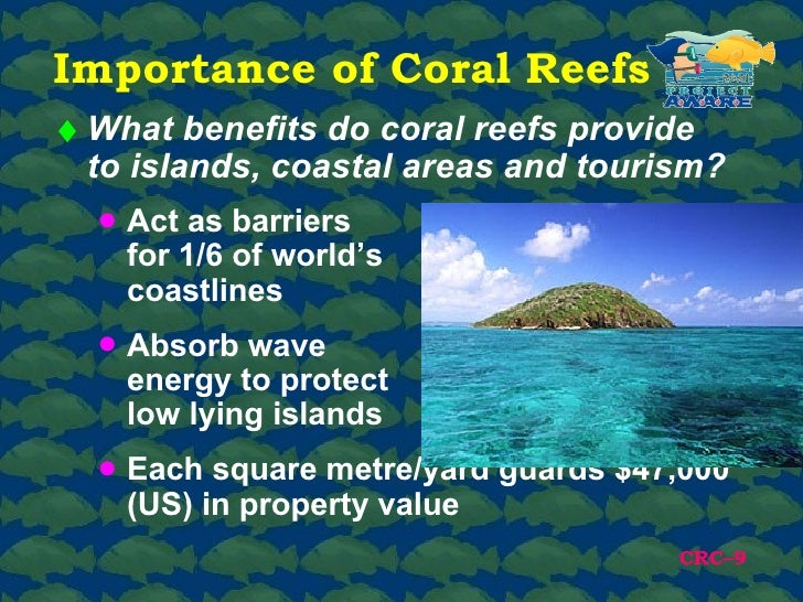 Climate Action Benefits: Coral Reefs