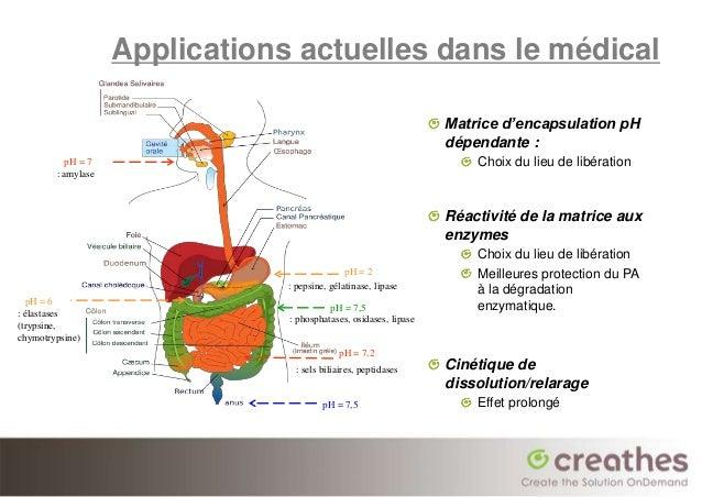 Applications actuelles dans le médical                                                                   Matrice d'encapsu...