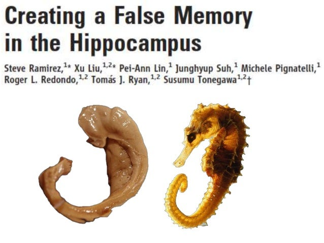 facts about false memory