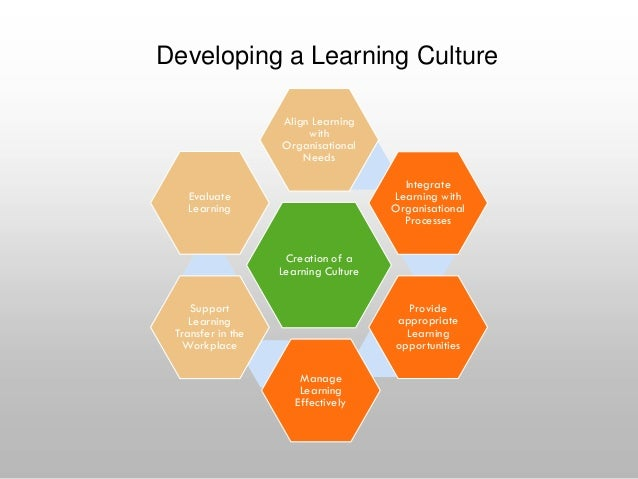 effects of culture on learning and A person's culture and upbringing has a profound effect on how they see the world and how they process information this fact was discussed by richard n.
