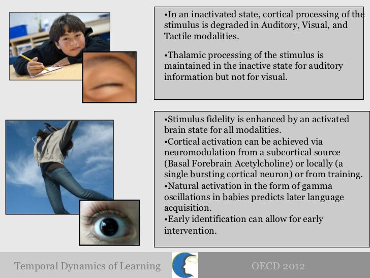 """the power of language and the critical age and the cognitive specialization of the brain These abilities lay the foundation for effective language acquisition  in  particular, specific cognitive functions to be differentially  """"perceptual narrowing""""  for native language specialization25,26  third, for data analysis, it is critical  that age-appropriate mri head models be used for source localization."""