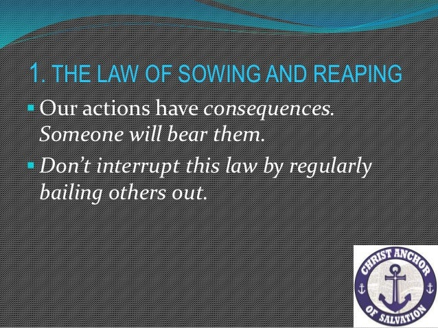 1. THE LAW OF SOWING AND REAPING The law of sowing and reaping is more easily identifiable in the functional part of a mar...