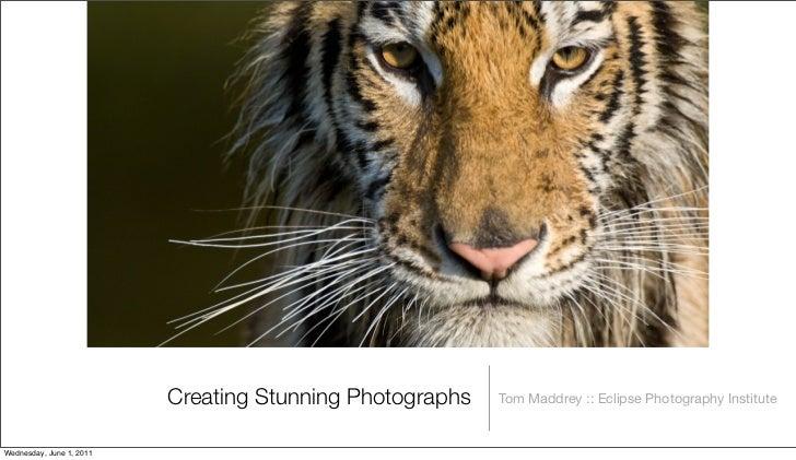 Creating Stunning Photographs   Tom Maddrey :: Eclipse Photography InstituteWednesday, June 1, 2011