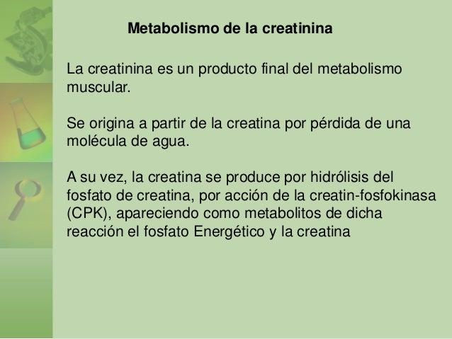 Una palabra: dieta del metabolismo acelerado antes y despues