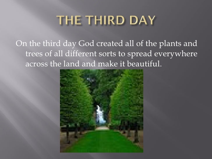 Image result for image of the day god created plants