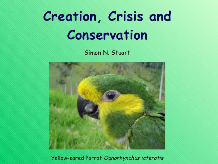 Creation, Crisis and Conservation Simon N. Stuart Yellow-eared Parrot  Ognorhynchus icterotis