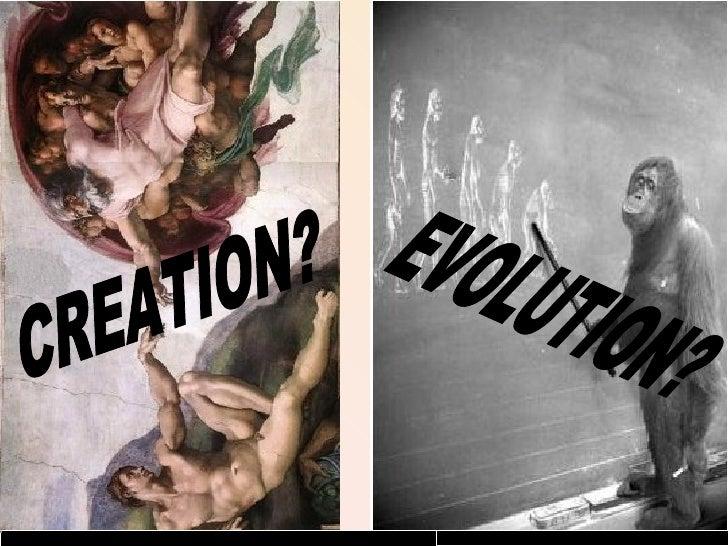 CREATION? EVOLUTION?