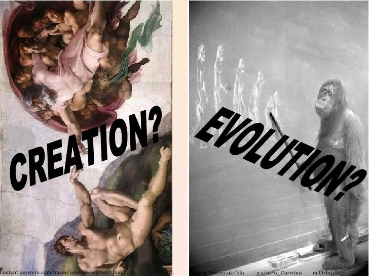 CREATION? EVOLUTION?