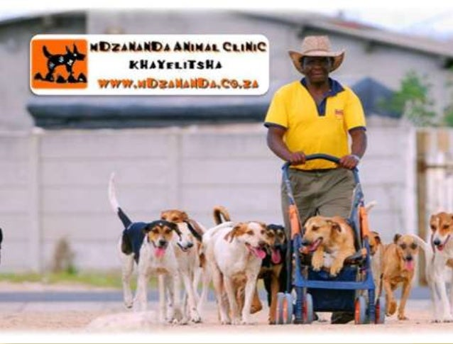 ONLY S.A. VETERINARY COUNCIL REGISTERED VETERINARY CLINIC FOR A POPULATION OF 1,5 MILLION PEOPLE AREA = 43.51 SQUARE KMS
