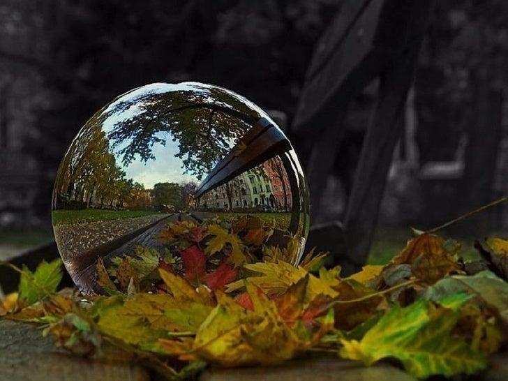 creative nature slideshare