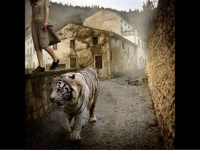 Creative Photography by Tom Chambers