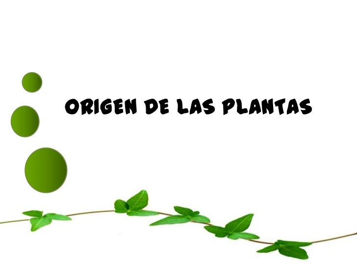 ORIGEN DE LAS PLANTAS<br />