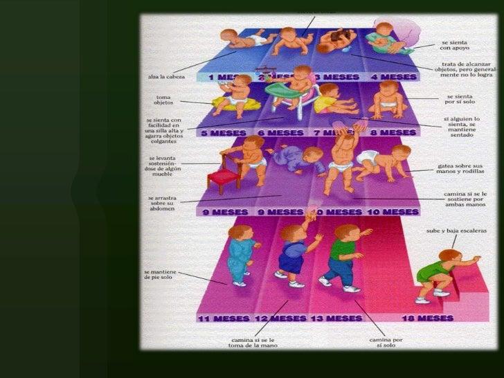 El modelo de la acta de la sesión de la comisión de la lucha contra la borrachera y el alcoholismo