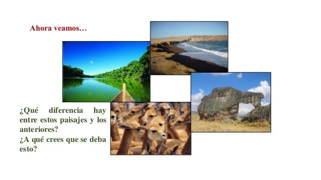 Son espacios continentales o marinos destinados por el Estado peruano a la preservación de su entorno y de las especies qu...