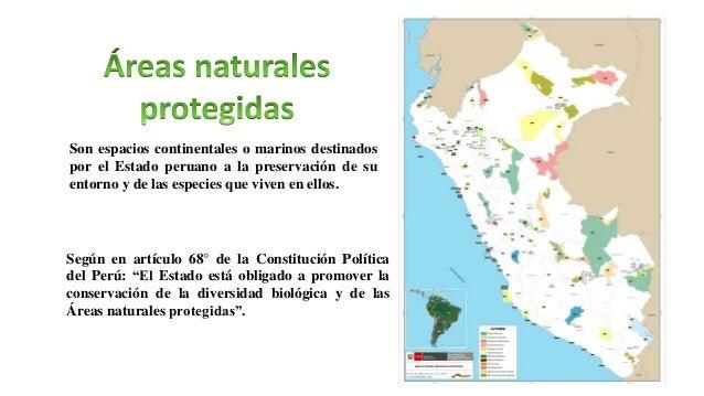 Parques nacionales Santuarios nacionales Santuarios históricos Reservas nacionales Refugios de vida silvestre Bosques de p...