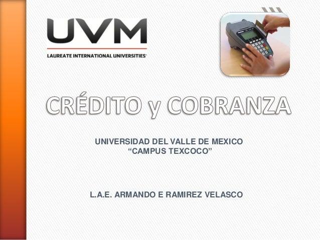 "UNIVERSIDAD DEL VALLE DE MEXICO ""CAMPUS TEXCOCO"" L.A.E. ARMANDO E RAMIREZ VELASCO"