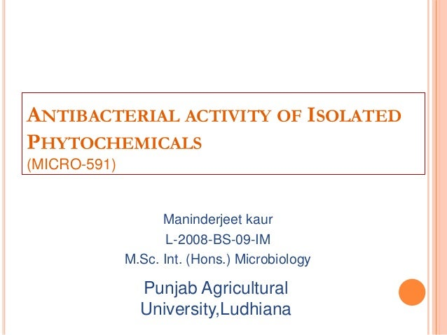 ANTIBACTERIAL ACTIVITY OF ISOLATEDPHYTOCHEMICALS(MICRO-591)Maninderjeet kaurL-2008-BS-09-IMM.Sc. Int. (Hons.) Microbiology...