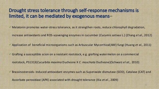 The environmental factors that effect turnip peroxidase Essay Sample