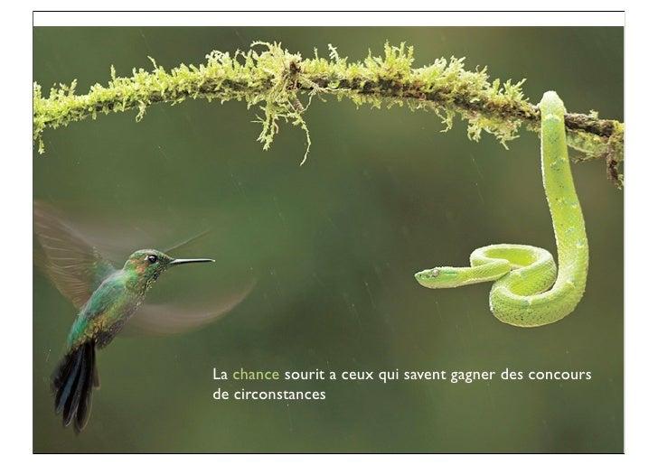 Attirer La Chance