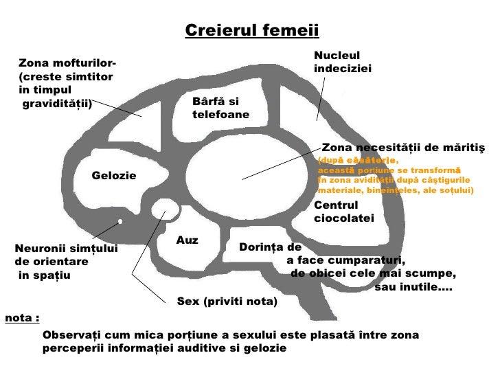 Creierul feme i i B â rf ă  si telefo a n e Nucleul indeciziei Zona necesit ăţ ii de m ă riti ş (dup ă   căsătorie ,  acea...