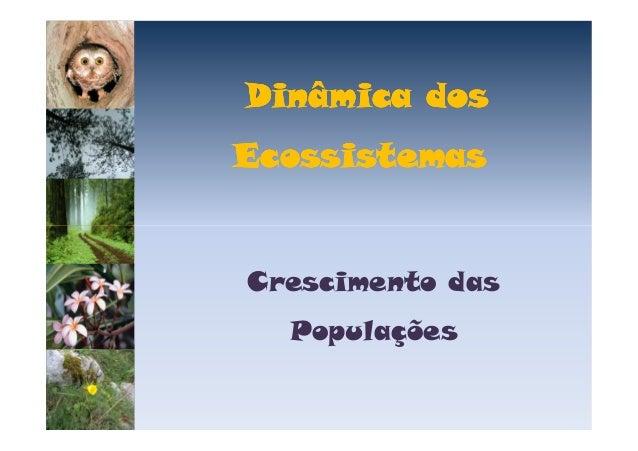 Dinâmica dos Ecossistemas  Crescimento das Populações