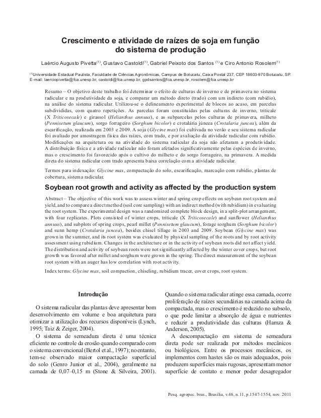 Crescimento e atividade de raízes de soja em função                             do sistema de produção      Laércio August...