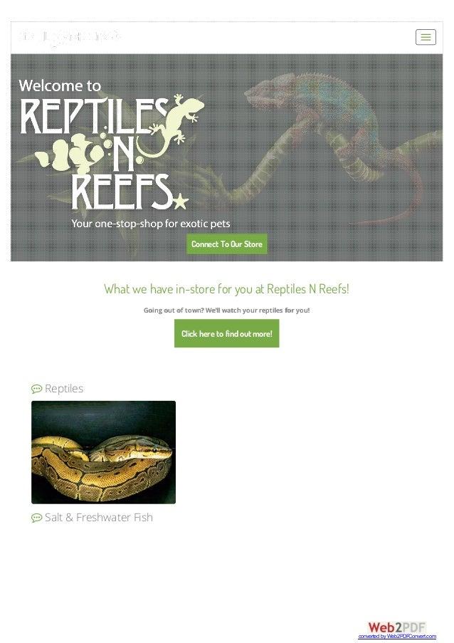 Crested geckos for sale las vegas
