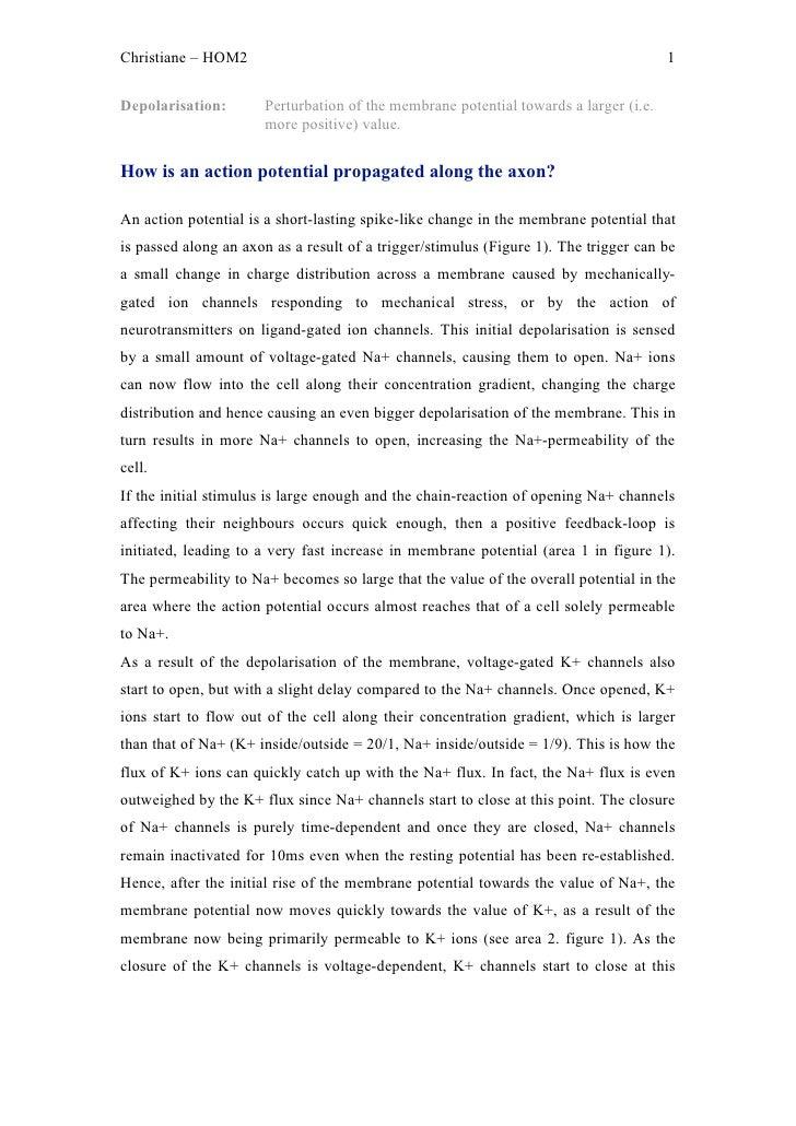 Christiane – HOM2                                                                     1Depolarisation:       Perturbation ...