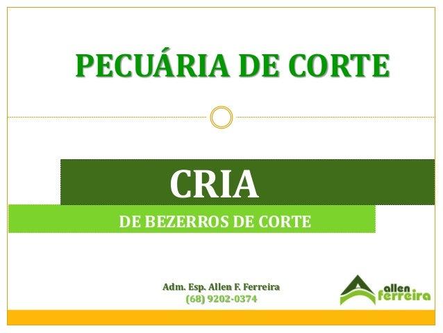 PECUÁRIA DE CORTE  CRIA DE BEZERROS DE CORTE  Adm. Esp. Allen F. Ferreira (68) 9202-0374