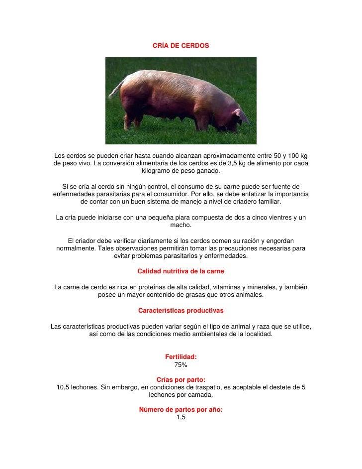 CRÍA DE CERDOS Los cerdos se pueden criar hasta cuando alcanzan aproximadamente entre 50 y 100 kg de peso vivo. La convers...