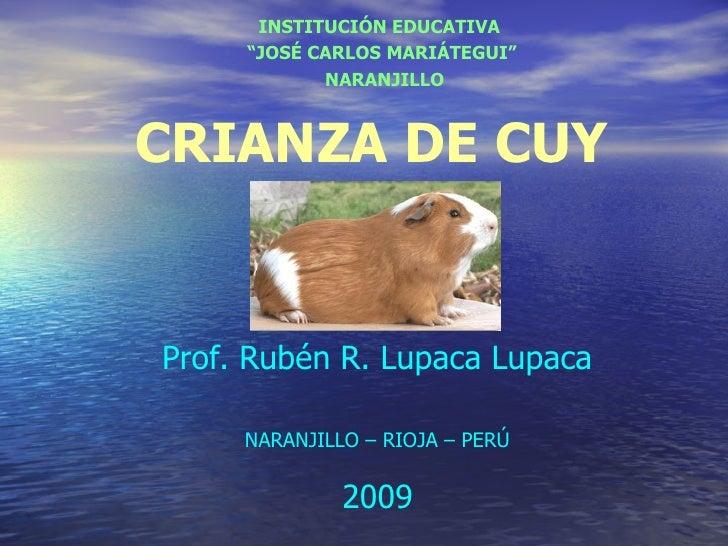 """INSTITUCIÓN EDUCATIVA     """"JOSÉ CARLOS MARIÁTEGUI""""            NARANJILLOCRIANZA DE CUYProf. Rubén R. Lupaca Lupaca     NAR..."""