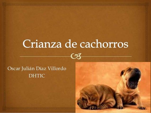 Oscar Julián Díaz Villordo DHTIC