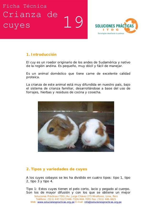 Ficha Técnica  Crianza de cuyes  19  1. Introducción El cuy es un roedor originario de los andes de Sudamérica y nativo de...