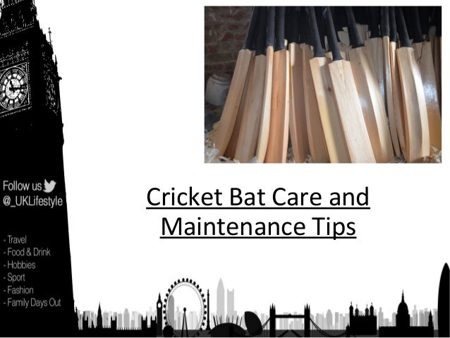 Cricket Bat Care and Maintenance Tips
