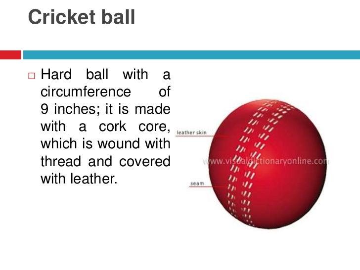 Cork Ball Cricket Bat: Cricket Visual Information 2º ESO Secciones