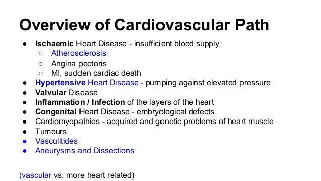 Cardiovascular Histopathology Tutorial Slide 3