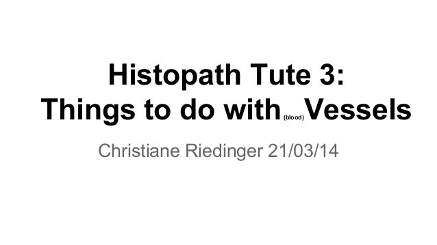 Histopath Tute 3: Things to do with(blood)Vessels Christiane Riedinger 21/03/14