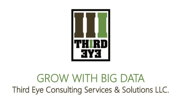 GROW WITH BIG DATA Third Eye Consulting Services & Solutions LLC.