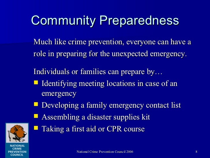 Understanding the local government role in crime prevention
